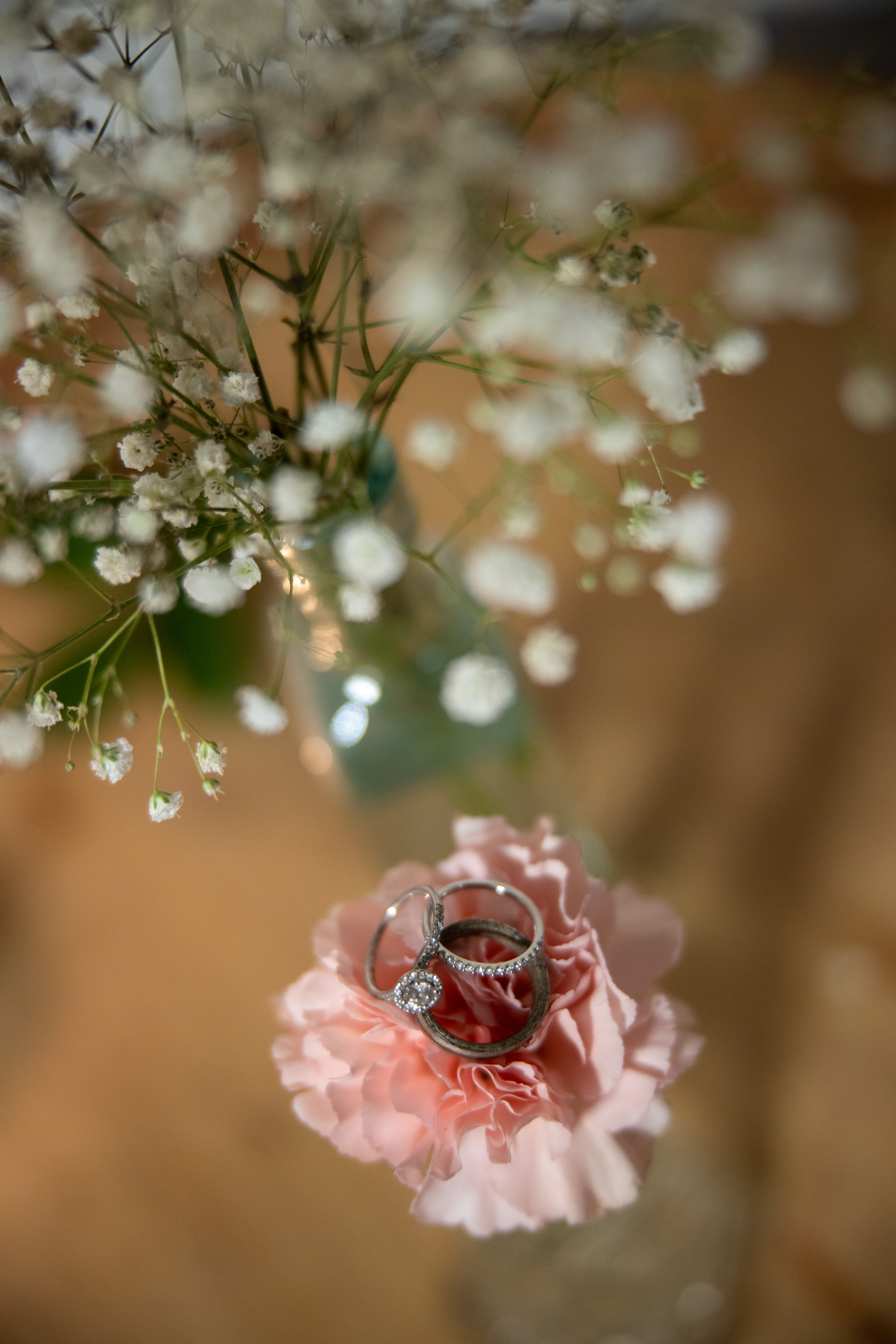 Elopement: The Most Romantic Gesture